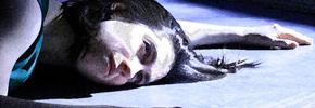 چهره به چهره رو به رو با طاهره قرهالعین در لومیناتو/ شهرام تابعمحمدى