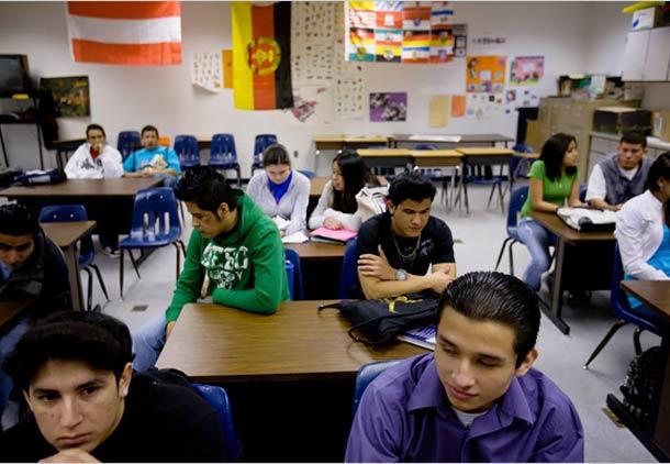 مشاوره شغلی و دانشجویان مهاجر