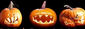 خواص کدوی هالووین/ دکتر پرویز قدیریان