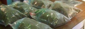 تریاک در شیشه های خیارشور از ایران به کانادا وارد می شده
