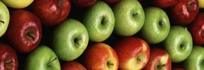 خواص جدید سیب/دکتر پرویز قدیریان