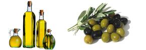 روغن زیتون و دانه های روغنی بهترین داروی بیماری های قلبی/ دکتر پرویز قدیریان