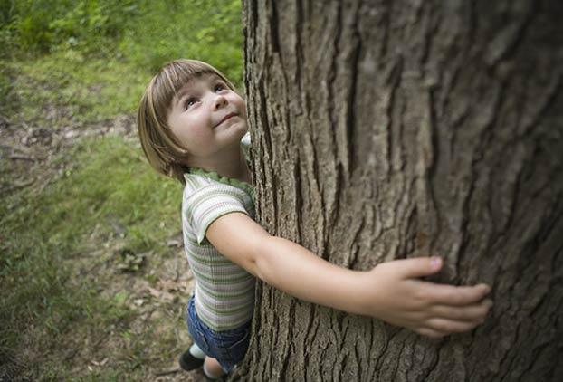 لزوم شناخت و آموزش محیط زیست/ زهرا حوائجی