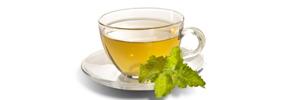 چای سبز و سرطان / دکتر پرویز قدیریان