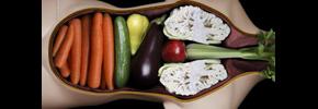نکاتی چند درباره رژیم غذایی گیاهی و گیاهخواری/ دکتر پرویز قدیریان