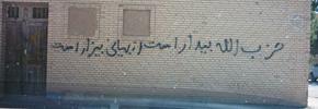 در کنار فیلم تابوی ایرانی/فلورا غدیری