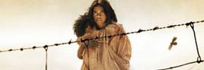 کودکان بومی؛ نسل ربوده شده/مریم زوینی