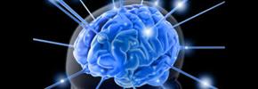 تاثیر بیماری قند روی مغز/ دکتر پرویز قدیریان