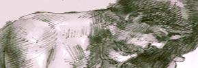 دستمال گردگیری/شکوفه آذر