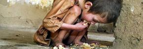 چهل درصد غذا در آمریکا به هدر می رود /دکتر پرویز قدیریان