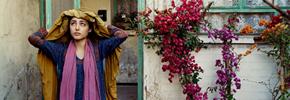 پایان سی و هفتمین جشنواره جهانی فیلم تورنتو/ عارف محمدی