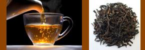 چای سیاه (معمولی) و بیماری قند/ دکتر پرویز قدیریان