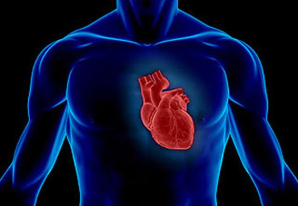 سکتهی قلبی، علائم و عوارض/اکرم پدرامنیا