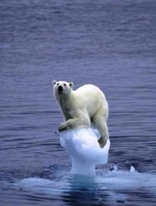 پدیده آب شدن یخ های قطبی به شدت ادامه دارد