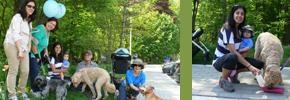 راه پیمایی با سگها به خاطر وفا/دوستداران وفا