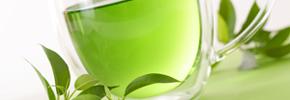 چای سبز جلوی پیشرفت آلزایمر را می گیرد/ دکتر پرویز قدیریان