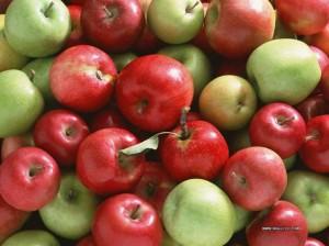 Apples-fruit