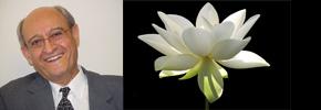 دکتر پرویز قدیریان؛انسان فرشته خصالی که دیگر در بین ما نیست/مهوش ندیمی
