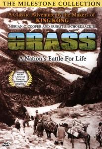 Grass-poster