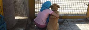 نقش دین در جنبش های حمایت از حیوانات/دوستداران وفا