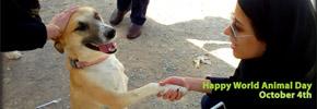 هفته ی اول اکتبر، هفته ی مهربانی با حیوانات/دوستداران وفا