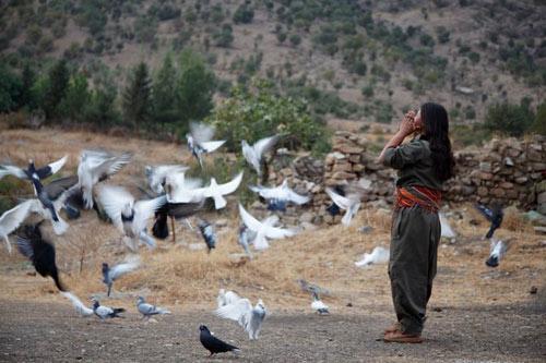 دختر کوبانی/حسن حسام