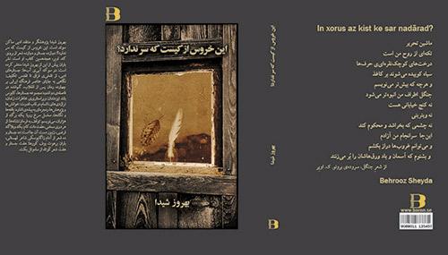 """معرفی کتاب """"این خروس از کیست که سر ندارد"""""""