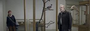 کبوتری بر شاخهای نشست و در هستی تعمق کرد*/ شهرام تابع محمدی