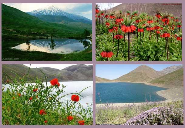 لالههای نگونسار؛ اشک سیاووش در گلستان کوه/جعفر سپهری