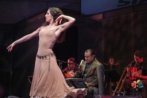 کنسرت حامد نیک پی با رقص کارن گونزالس همراه بود