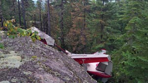 شش نفر در سقوط هواپیمای یک موتوره جان باختند