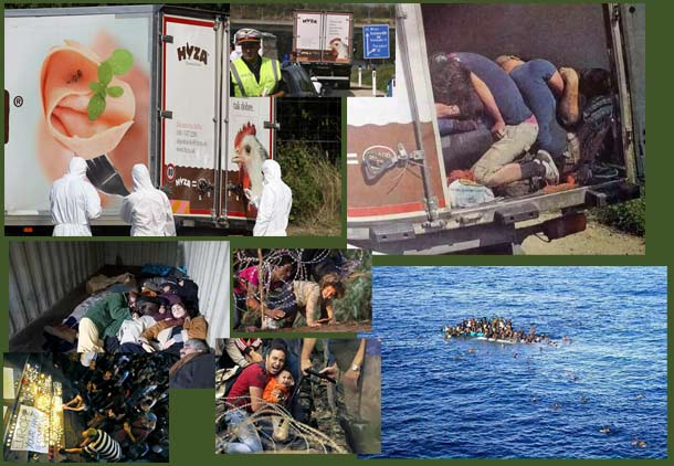 refugee-crisis-S