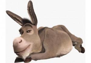 donkey-H3