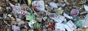آشغال هایتان را دور نریزید، آلمان زباله وارد می کند!/میرزاتقی خان