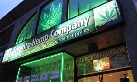 گشایش سریع فروشگاه های ماری جوانا در محله های تورنتو