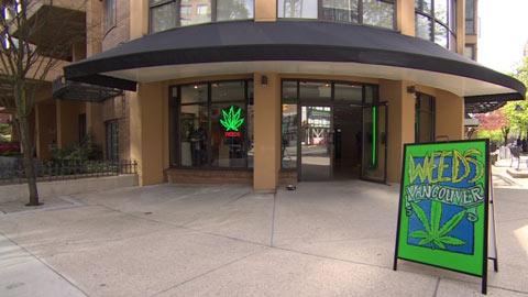 جان توری: احداث فروشگاه های ماری جوانا از کنترل خارج شده