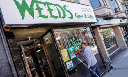 تورنتو به دنبال راه حل گسترش بی رویه فروشگاه های ماری جوانا