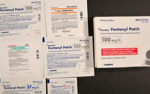 تغییر در تجویز مسکن های مخدر انتاریو