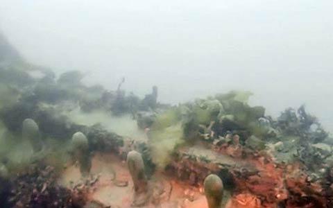 اچ ام اس ترور دومین کشتی فرانکلین در خلیج ترور پیدا شد