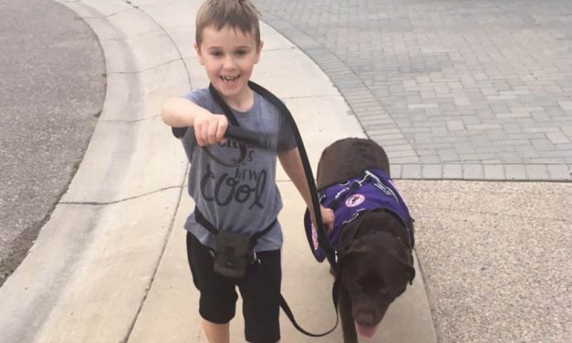 مرگ غم انگیز ۱۴ سگ در ساسکاتون