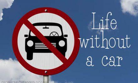 زندگی بدون داشتن اتوموبیل؟/محمد رحیمیان