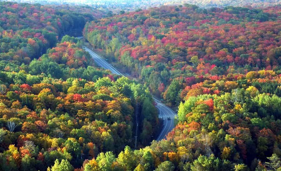 هشت مکان برتر برای دیدن رنگ های پاییزی انتاریو