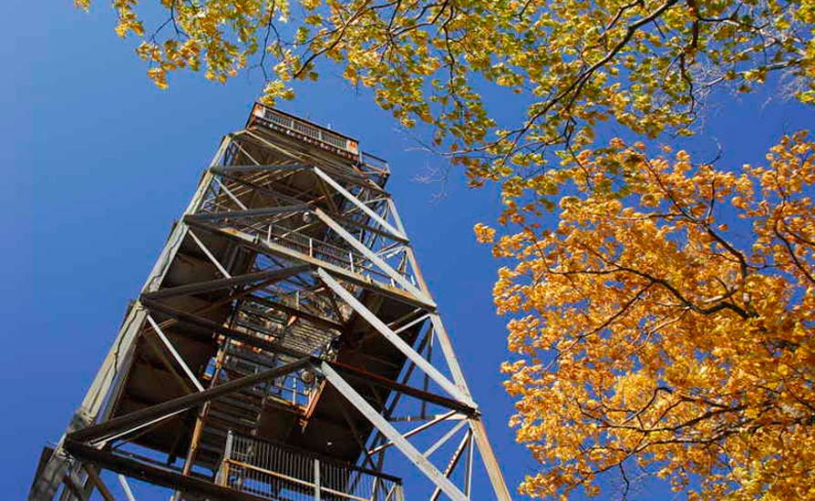 dorset-tower-01