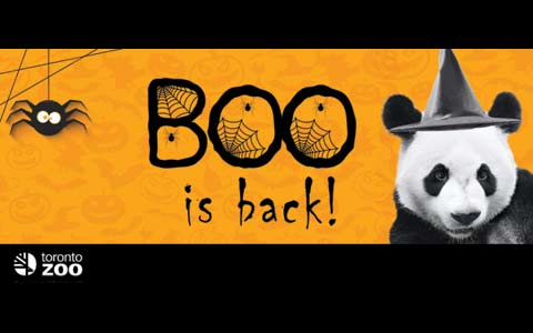 ورود کودکان با لباس هالووین به باغ وحش تورنتو رایگان است
