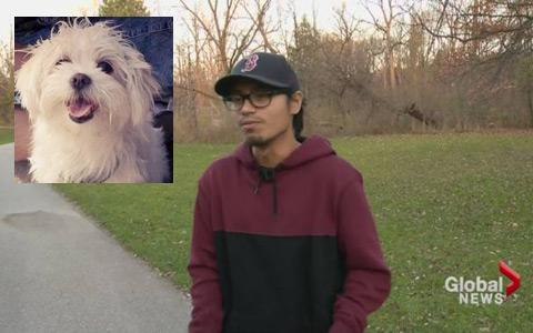 سرقت یک سگ توسط دوچرخه سواران
