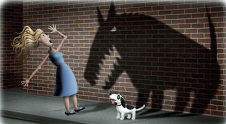 dog-phobia
