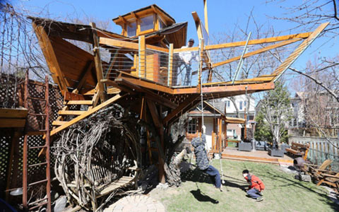 خانه کشتی درختی در جای خودش باقی می ماند!