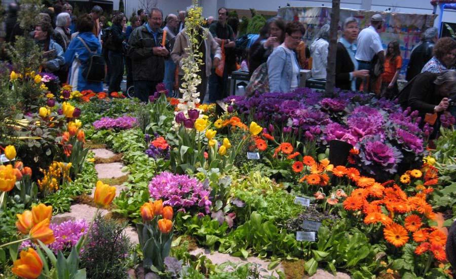 جشنواره ی گل و گیاه فرصتی برای ستایش طبیعت