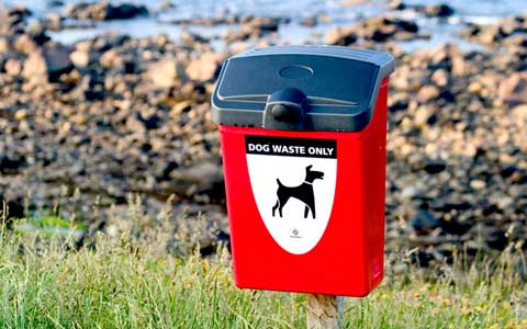 تبدیل مدفوع سگ به انرژی در واترلو