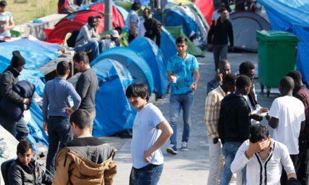 دنیای اردوگاه ها؛کارخانه ساخت عناصر نامطلوب/برگردان شهباز نخعی